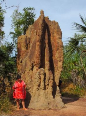 A Cathedral termite mound
